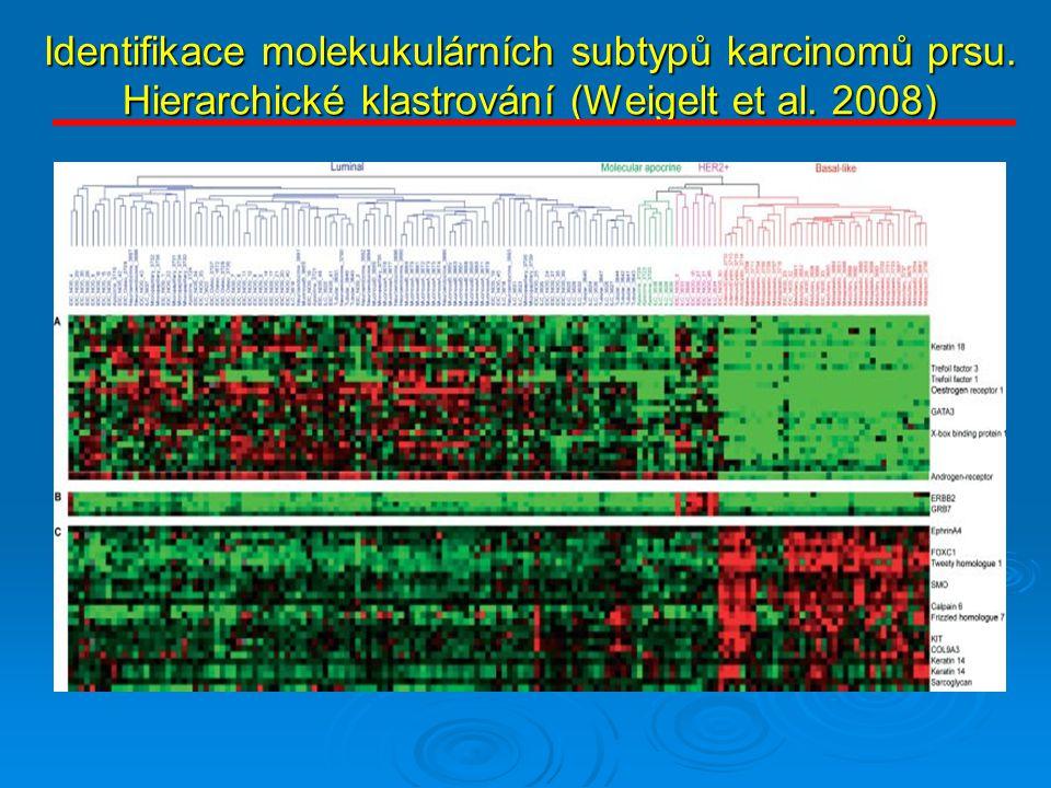 Identifikace molekukulárních subtypů karcinomů prsu. Hierarchické klastrování (Weigelt et al. 2008)