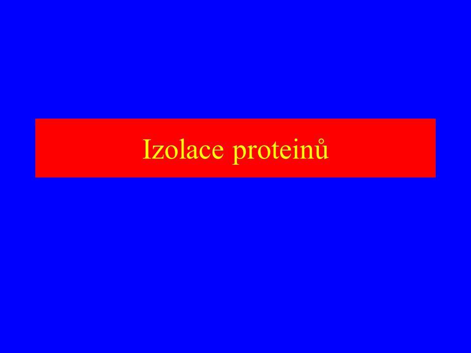 Izolace proteinů
