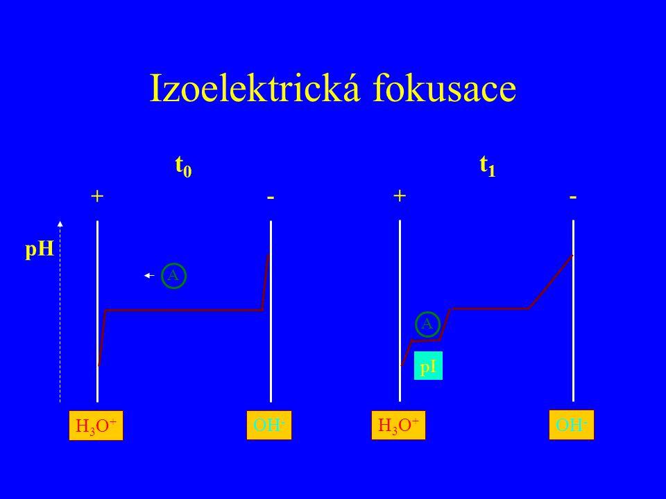 Izoelektrická fokusace pH + - H3O+H3O+ OH - A + - H3O+H3O+ A pI t0t0 t1t1