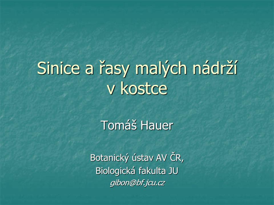 Sinice a řasy malých nádrží v kostce Tomáš Hauer Botanický ústav AV ČR, Biologická fakulta JU gibon@bf.jcu.cz