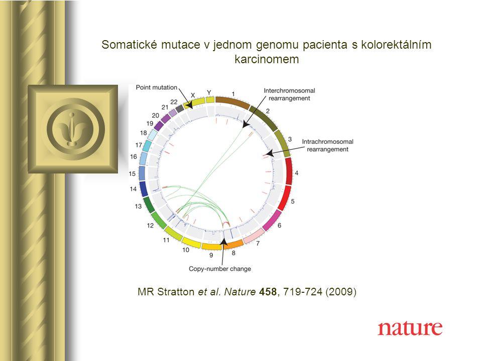 Genové mutace Mutací vzniklé alely jsou v populaci z různých důvodů vzácné (např.
