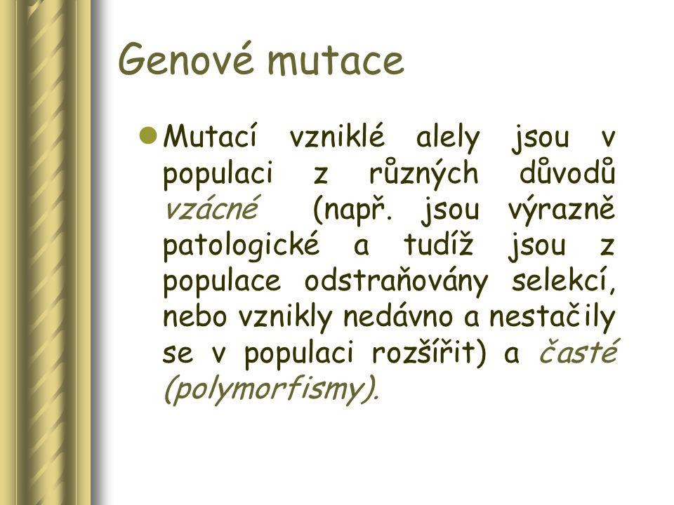 Komplexní (multifaktoriální, multigenní) nemoci Za genetickou predispozici mnoha biologických procesů, evolučních adaptací a tedy také tzv.