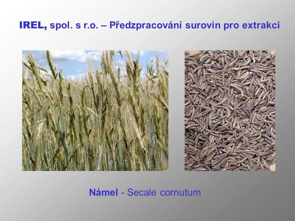 Námel - Secale cornutum IREL, spol. s r.o. – Předzpracování surovin pro extrakci