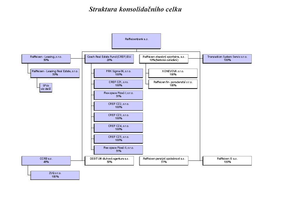 Struktura konsolidačního celku