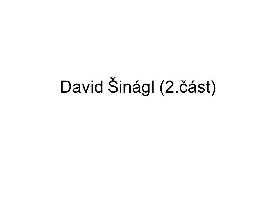 David Šinágl (2.část)