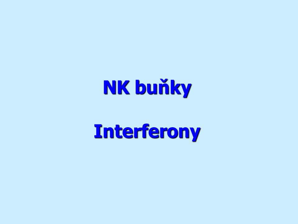 NK buňky Interferony