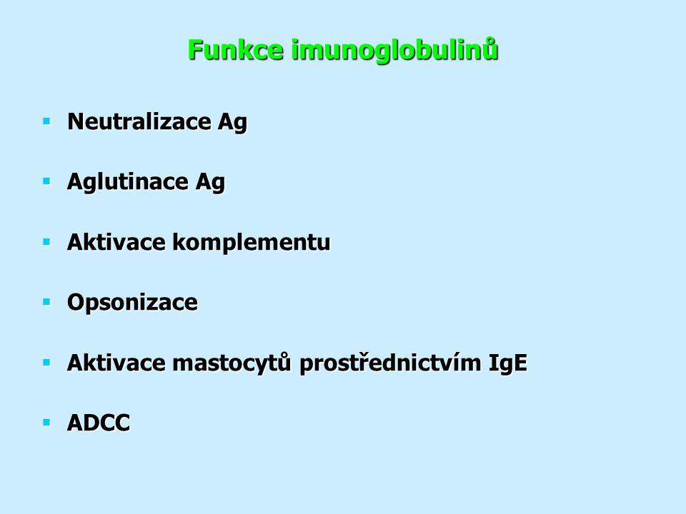 Funkce imunoglobulinů  Neutralizace Ag  Aglutinace Ag  Aktivace komplementu  Opsonizace  Aktivace mastocytů prostřednictvím IgE  ADCC