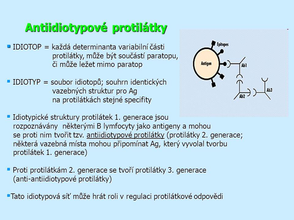 Antiidiotypové protilátky  IDIOTOP = každá determinanta variabilní části protilátky, může být součástí paratopu, či může ležet mimo paratop protilátky, může být součástí paratopu, či může ležet mimo paratop  IDIOTYP = soubor idiotopů; souhrn identických vazebných struktur pro Ag na protilátkách stejné specifity  Idiotypické struktury protilátek 1.
