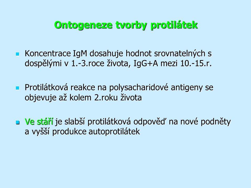 Ontogeneze tvorby protilátek Koncentrace IgM dosahuje hodnot srovnatelných s dospělými v 1.-3.roce života, IgG+A mezi 10.-15.r.