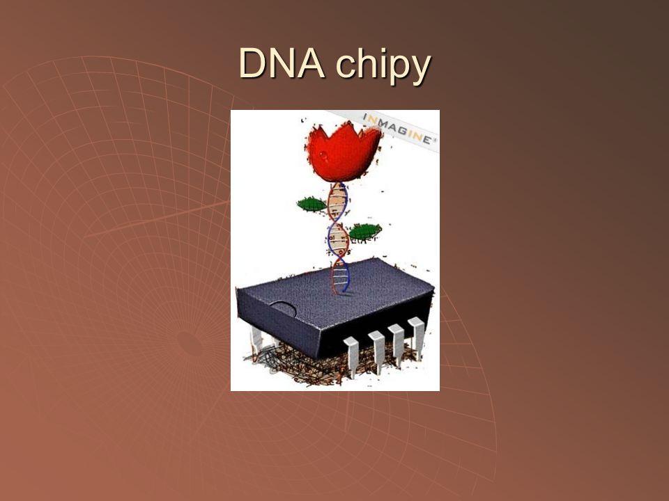 DNA chipy