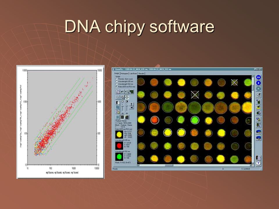 DNA chipy software