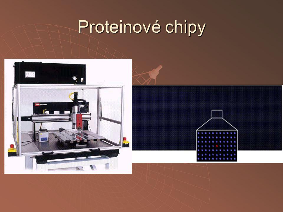 Proteinové chipy