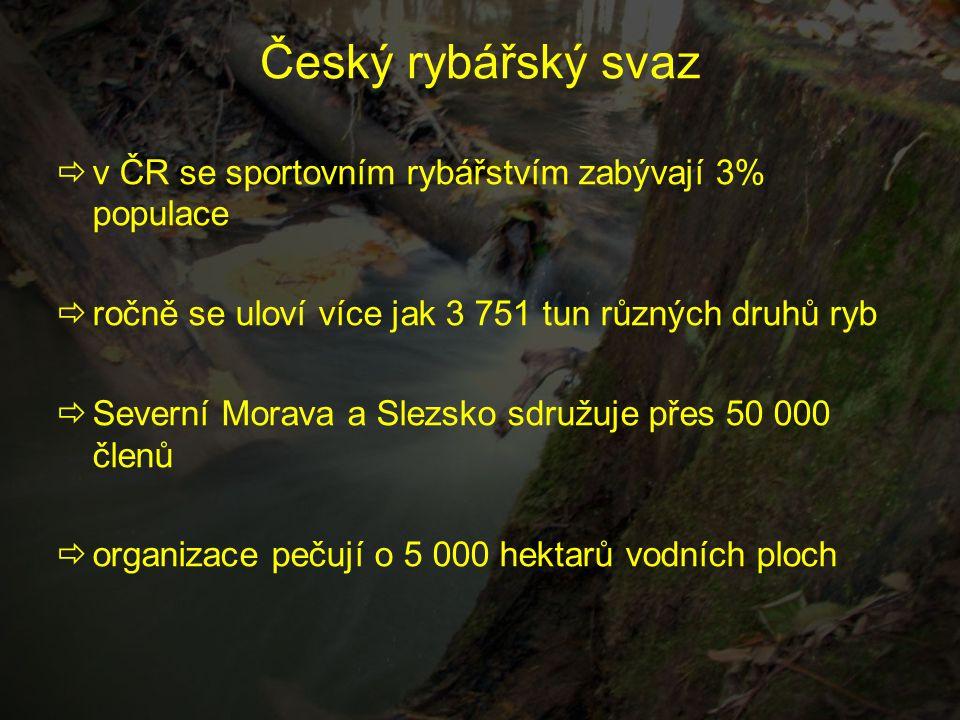 Český rybářský svaz  v ČR se sportovním rybářstvím zabývají 3% populace  ročně se uloví více jak 3 751 tun různých druhů ryb  Severní Morava a Slez