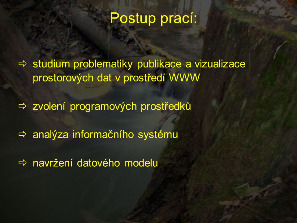 Postup prací:  studium problematiky publikace a vizualizace prostorových dat v prostředí WWW  zvolení programových prostředků  analýza informačního