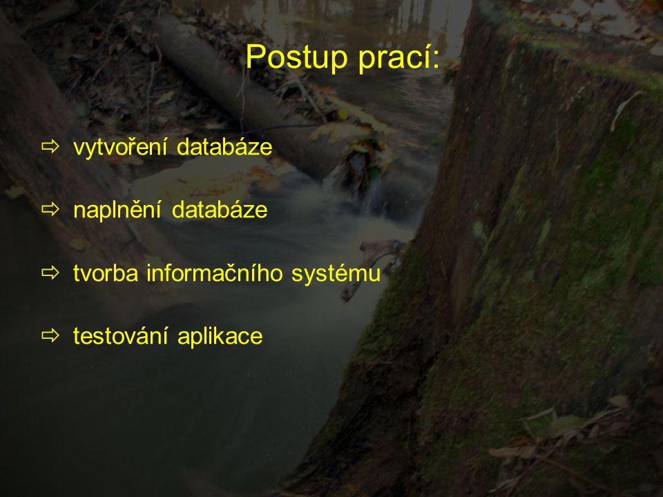 Postup prací:  vytvoření databáze  naplnění databáze  tvorba informačního systému  testování aplikace