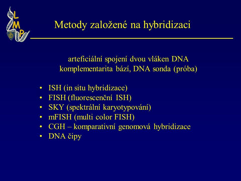 Metody založené na hybridizaci arteficiální spojení dvou vláken DNA komplementarita bází, DNA sonda (próba) ISH (in situ hybridizace) FISH (fluorescenční ISH) SKY (spektrální karyotypování) mFISH (multi color FISH) CGH – komparativní genomová hybridizace DNA čipy