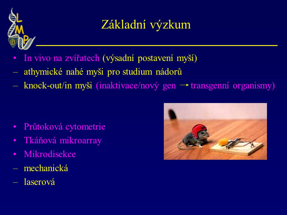 Základní výzkum In vivo na zvířatech (výsadní postavení myší) –athymické nahé myši pro studium nádorů –knock-out/in myši (inaktivace/nový gen transgen