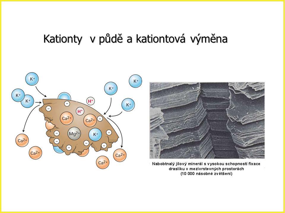 Kationty v půdě a kationtová výměna