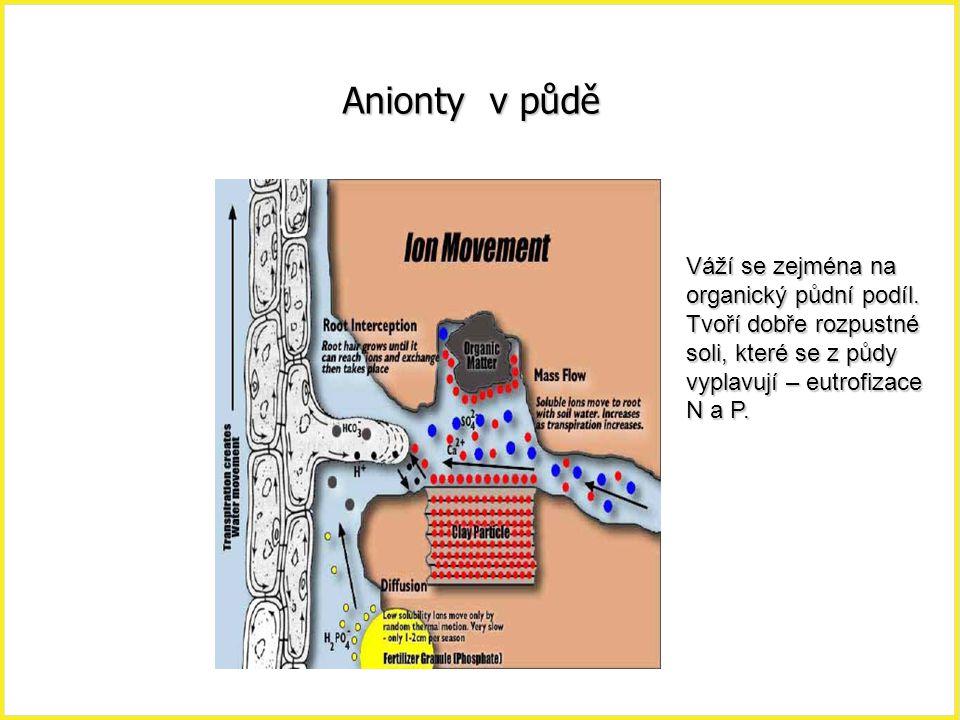 Anionty v půdě Váží se zejména na organický půdní podíl. Tvoří dobře rozpustné soli, které se z půdy vyplavují – eutrofizace N a P.