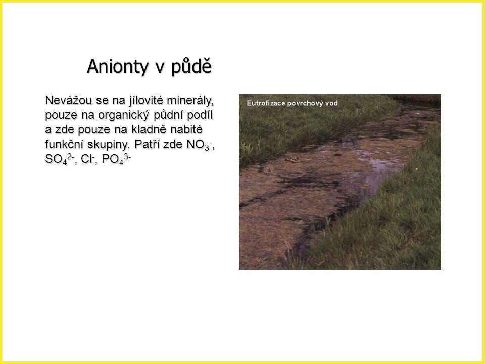Anionty v půdě Nevážou se na jílovité minerály, pouze na organický půdní podíl a zde pouze na kladně nabité funkční skupiny. Patří zde NO 3 -, SO 4 2-