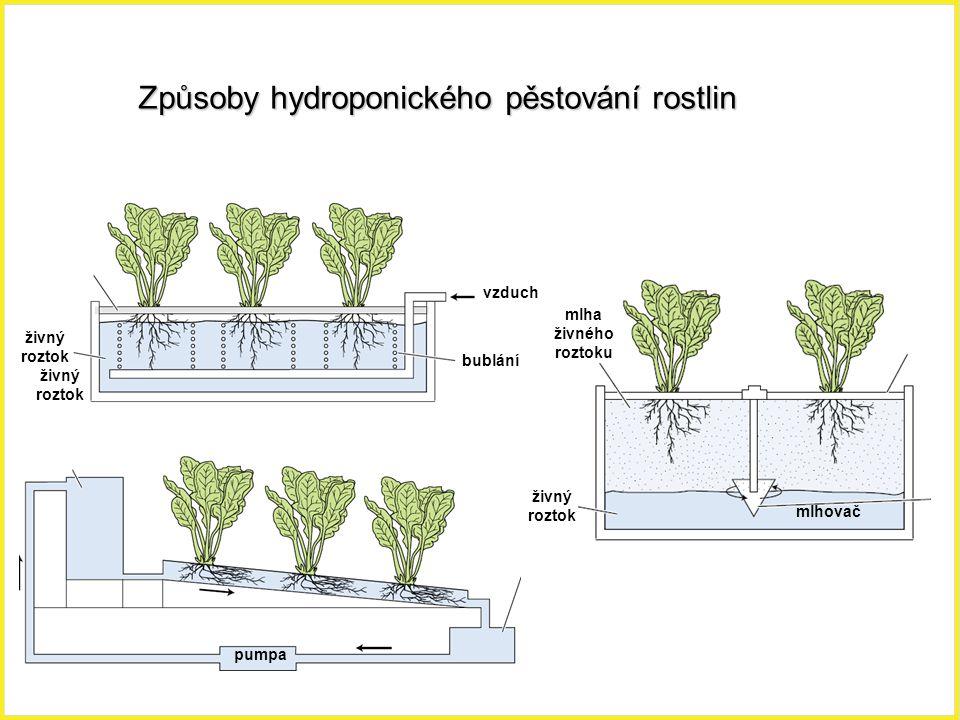 Způsoby hydroponického pěstování rostlin bublání vzduch živný roztok pumpa živný roztok mlha živného roztoku živný roztok mlhovač