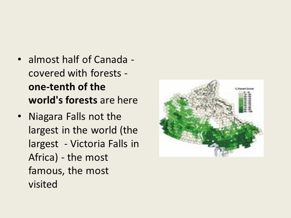 almost half of Canada - covered with forests - one-tenth of the world s forests are here Niagara Falls not the largest in the world (the largest - Victoria Falls in Africa) - the most famous, the most visited