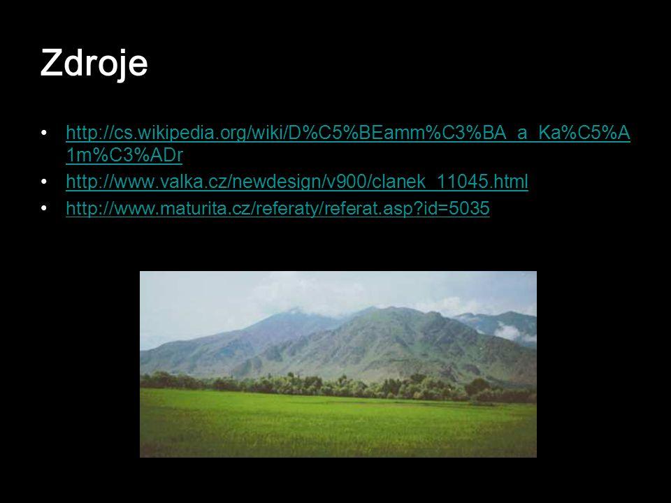 Zdroje http://cs.wikipedia.org/wiki/D%C5%BEamm%C3%BA_a_Ka%C5%A 1m%C3%ADrhttp://cs.wikipedia.org/wiki/D%C5%BEamm%C3%BA_a_Ka%C5%A 1m%C3%ADr http://www.v