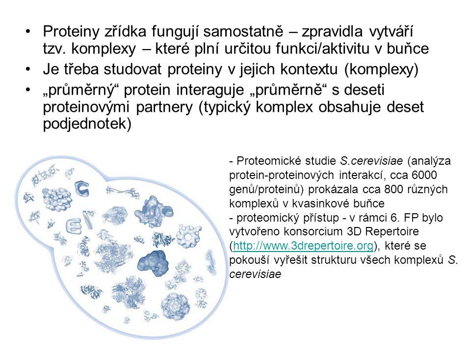 Proteiny zřídka fungují samostatně – zpravidla vytváří tzv. komplexy – které plní určitou funkci/aktivitu v buňce Je třeba studovat proteiny v jejich