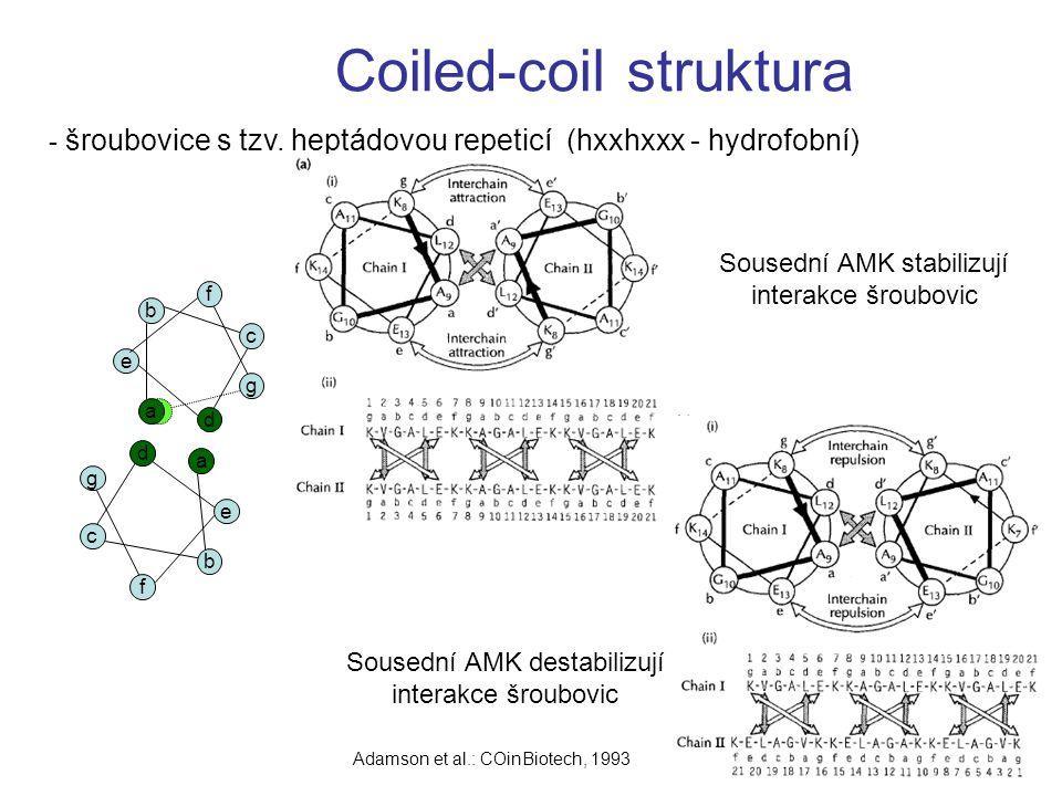 Coiled-coil struktura fa d e b f c g a d c g f e b - šroubovice s tzv. heptádovou repeticí (hxxhxxx - hydrofobní) Sousední AMK stabilizují interakce š