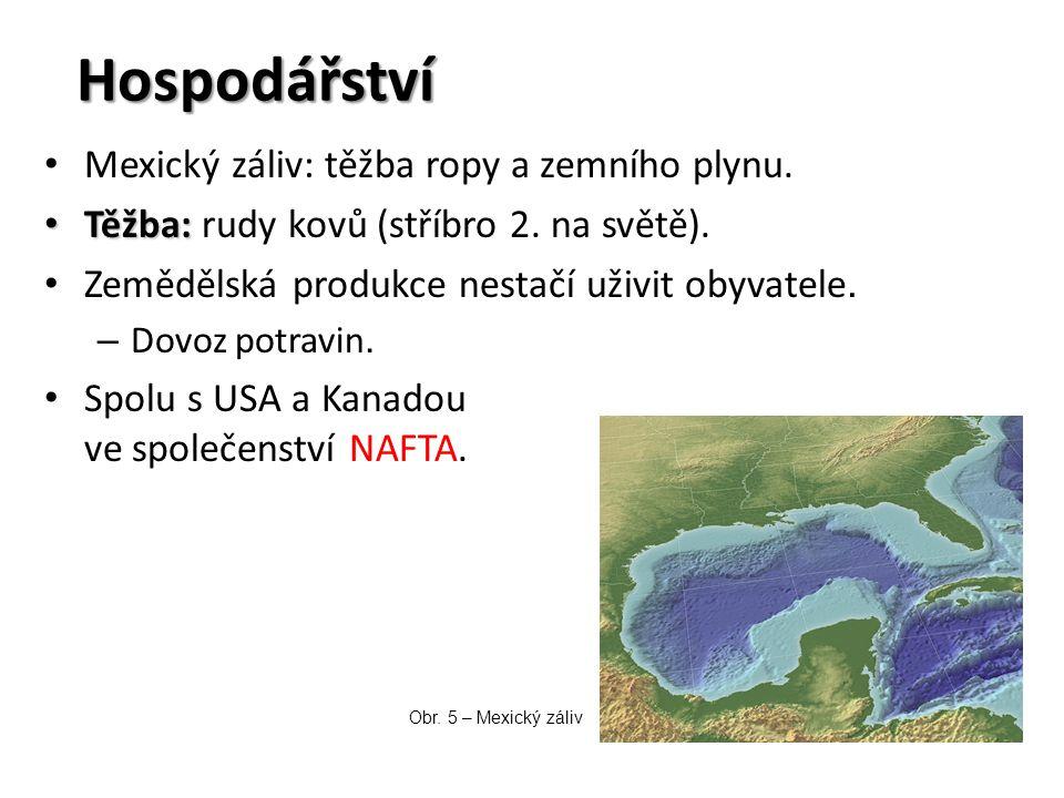 Hospodářství Mexický záliv: těžba ropy a zemního plynu. Těžba: Těžba: rudy kovů (stříbro 2. na světě). Zemědělská produkce nestačí uživit obyvatele. –