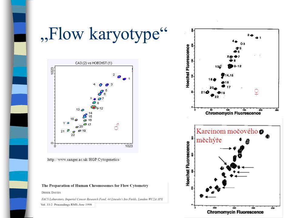 """Flow karyotype"" http://www.sanger.ac.uk/HGP/Cytogenetics/ ♂ ♀ Karcinom močového měchýře"
