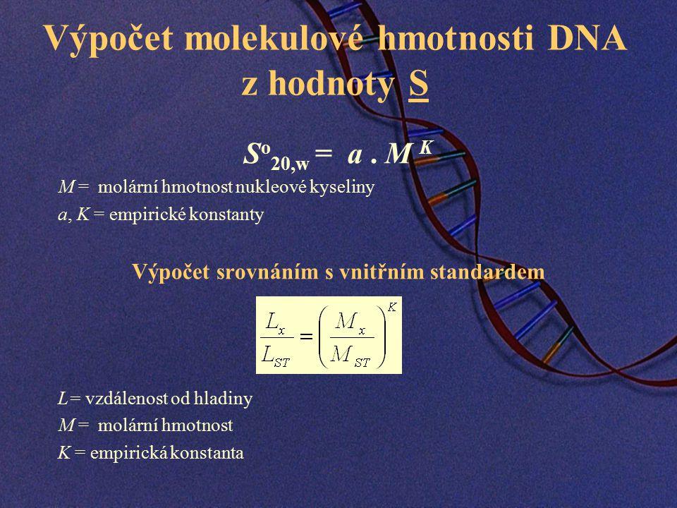 Výpočet molekulové hmotnosti DNA z hodnoty S S o 20,w = a.