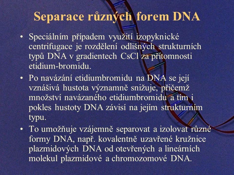 Separace různých forem DNA Speciálním případem využití izopyknické centrifugace je rozdělení odlišných strukturních typů DNA v gradientech CsCl za přítomnosti etidium-bromidu.
