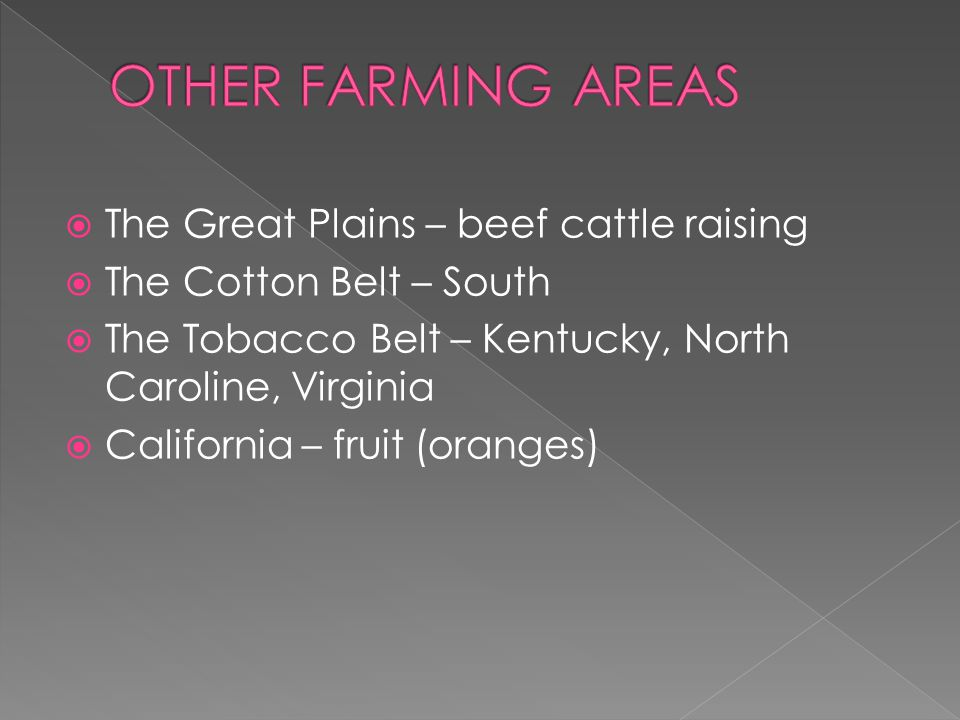 The Great Plains – beef cattle raising  The Cotton Belt – South  The Tobacco Belt – Kentucky, North Caroline, Virginia  California – fruit (oranges)