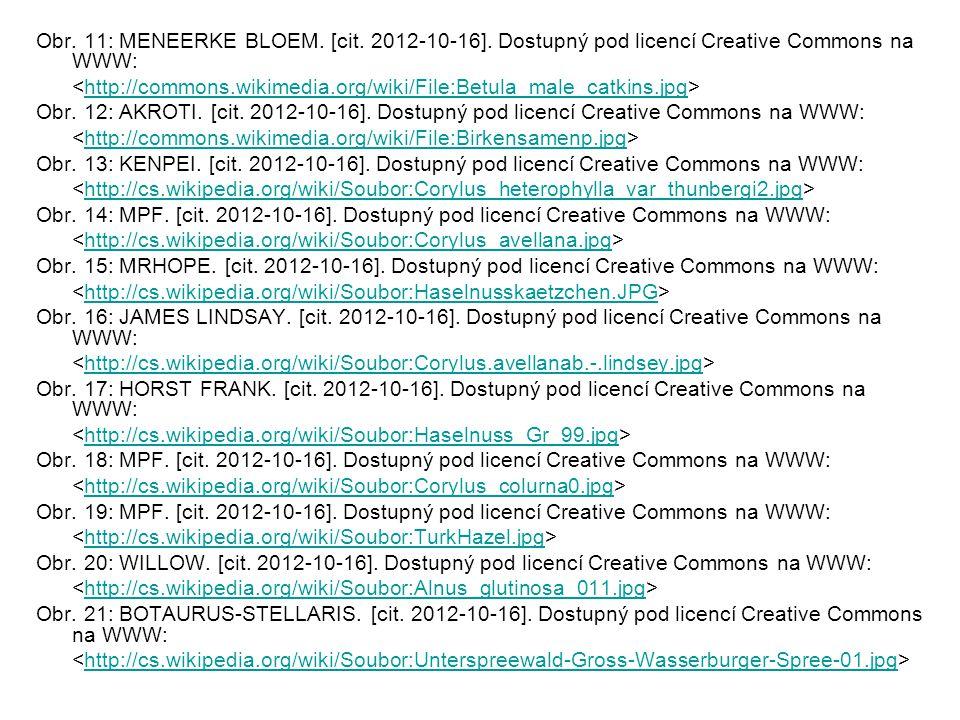 Obr. 11: MENEERKE BLOEM. [cit. 2012-10-16].