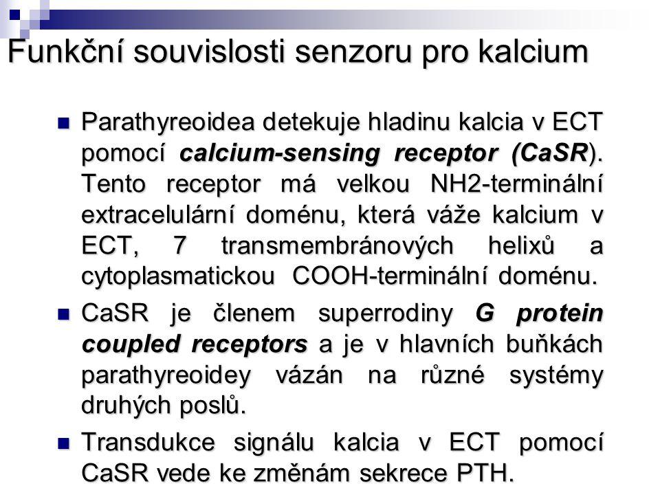 Funkční souvislosti senzoru pro kalcium Parathyreoidea detekuje hladinu kalcia v ECT pomocí calcium-sensing receptor (CaSR). Tento receptor má velkou