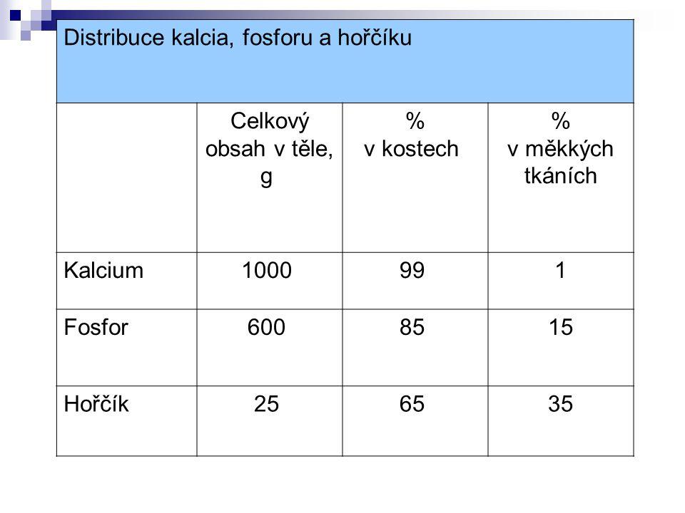 Distribuce kalcia, fosforu a hořčíku Celkový obsah v těle, g % v kostech % v měkkých tkáních Kalcium 1000 99 1 Fosfor 600 85 15 Hořčík 25 65 35
