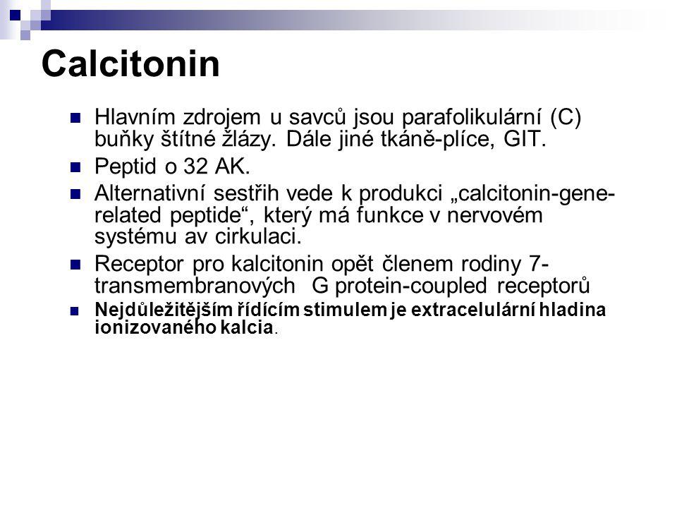 Calcitonin Hlavním zdrojem u savců jsou parafolikulární (C) buňky štítné žlázy. Dále jiné tkáně-plíce, GIT. Peptid o 32 AK. Alternativní sestřih vede