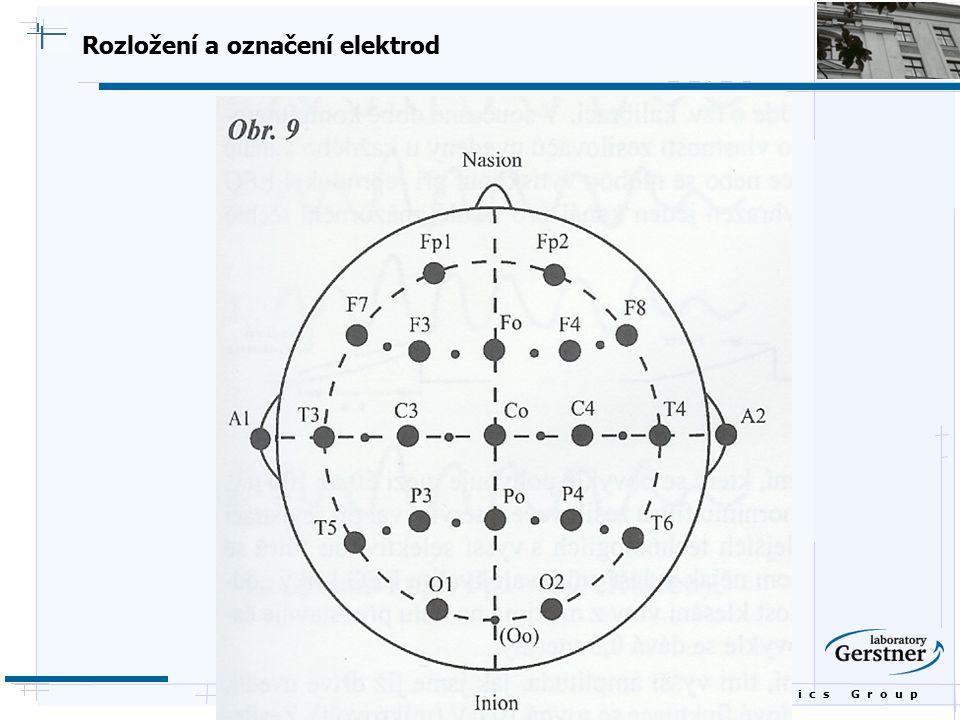 B i o c y b e r n e t i c s G r o u p Rozložení a označení elektrod