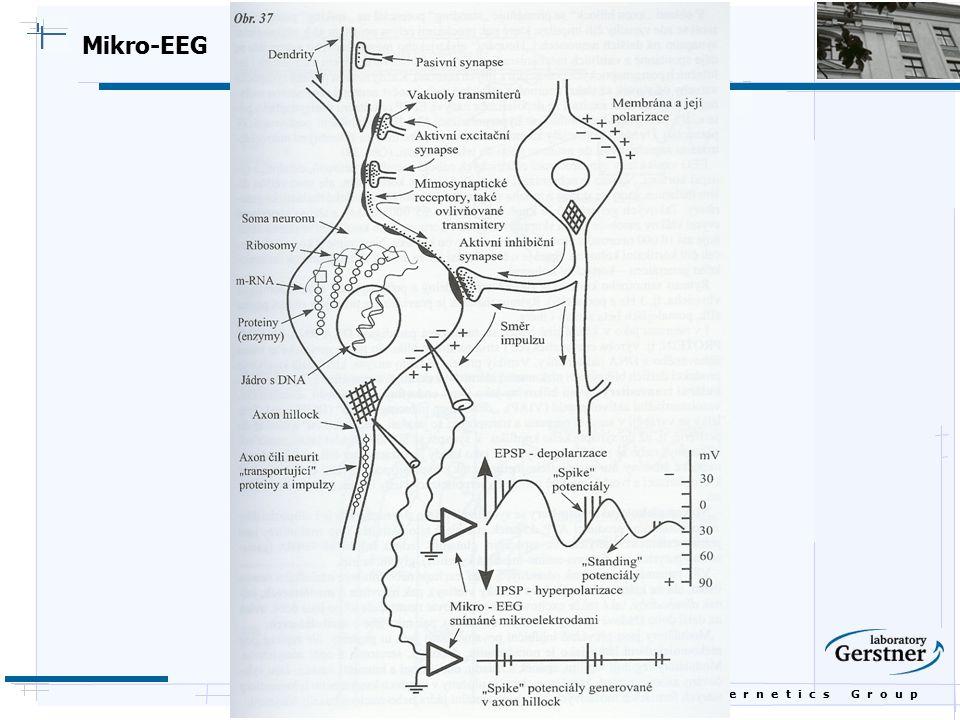 B i o c y b e r n e t i c s G r o u p Mikro-EEG