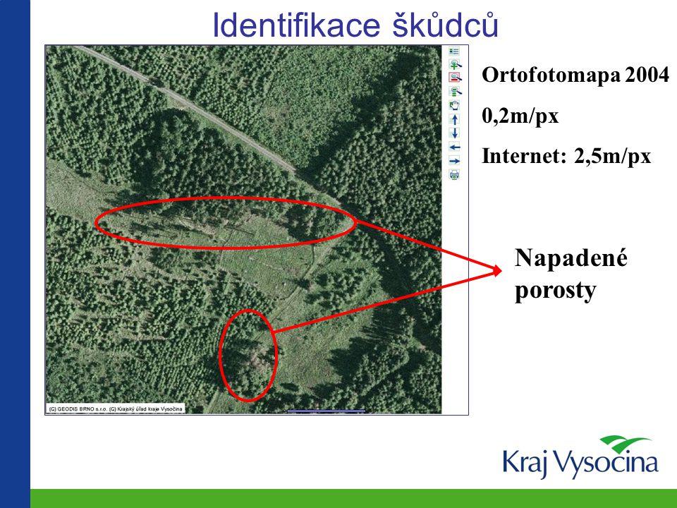 Identifikace škůdců Napadené porosty Ortofotomapa 2004 0,2m/px Internet: 2,5m/px