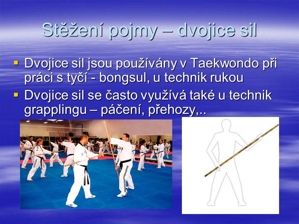 Stěžení pojmy – dvojice sil  Dvojice sil jsou používány v Taekwondo při práci s tyčí - bongsul, u technik rukou  Dvojice sil se často využívá také u