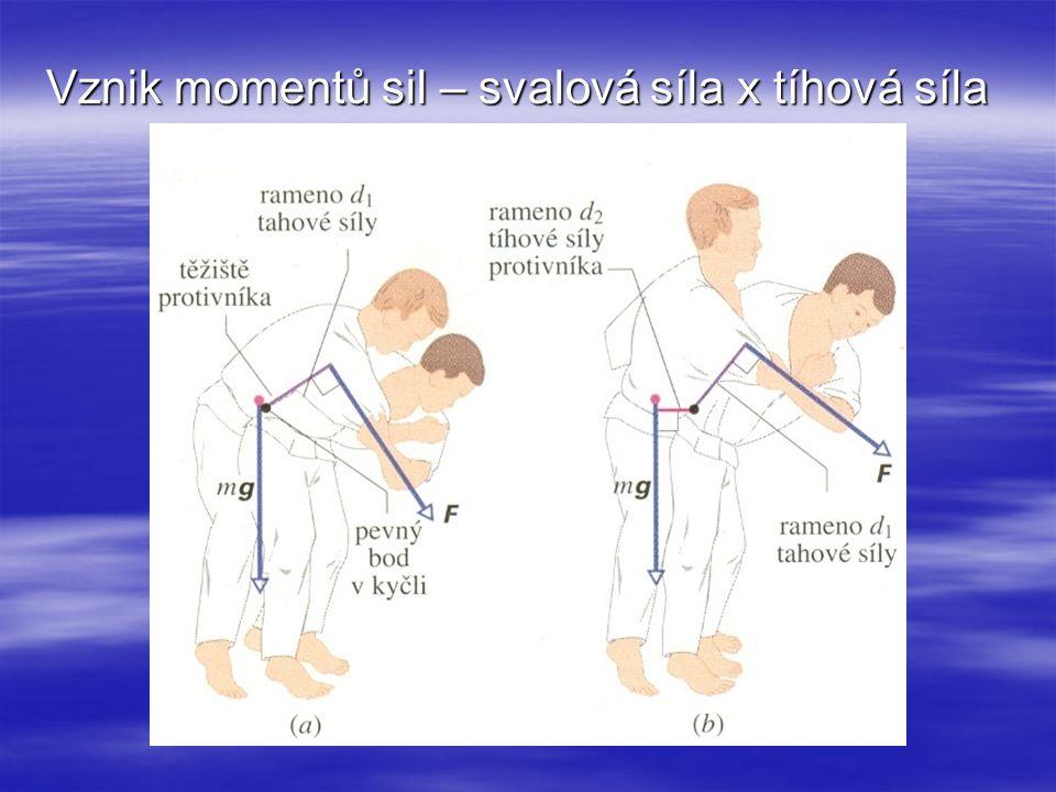 Vznik momentů sil – svalová síla x tíhová síla
