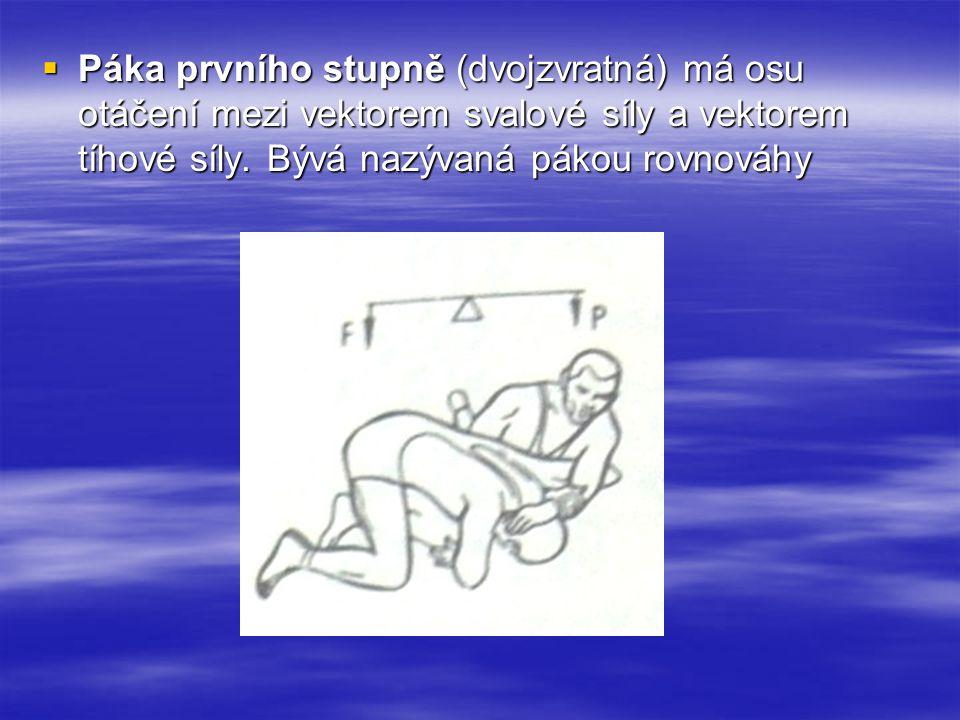  Páka prvního stupně (dvojzvratná) má osu otáčení mezi vektorem svalové síly a vektorem tíhové síly. Bývá nazývaná pákou rovnováhy