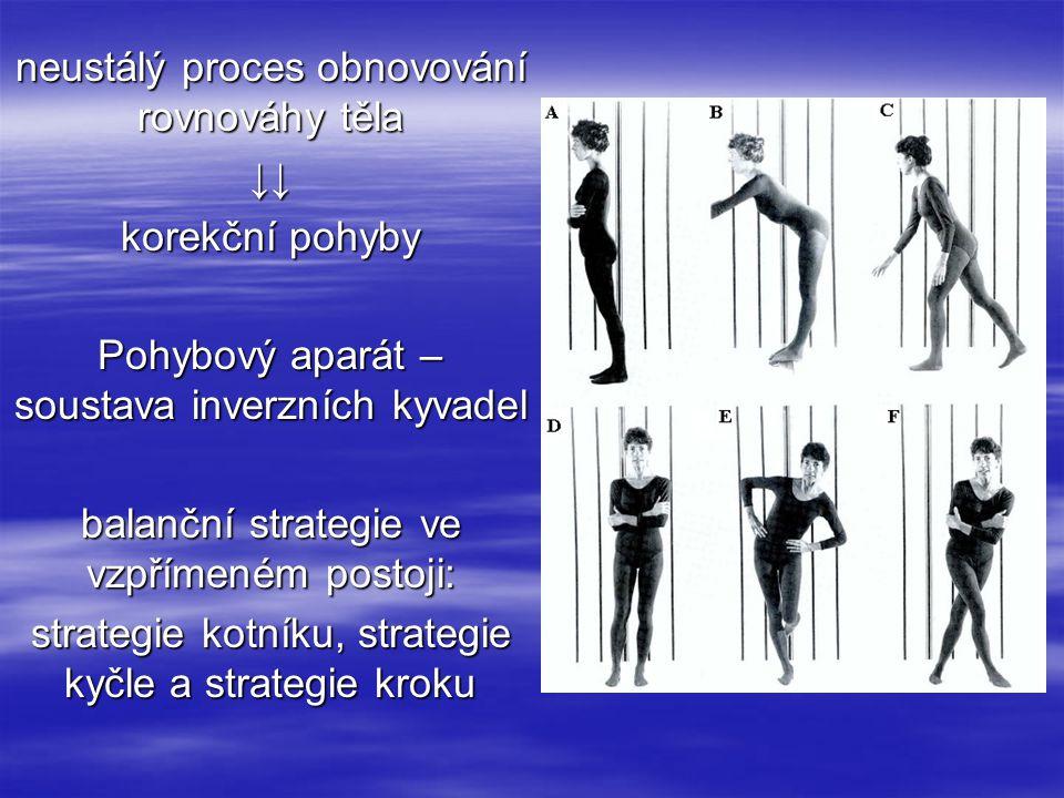 neustálý proces obnovování rovnováhy těla ↓↓ korekční pohyby Pohybový aparát – soustava inverzních kyvadel balanční strategie ve vzpřímeném postoji: s