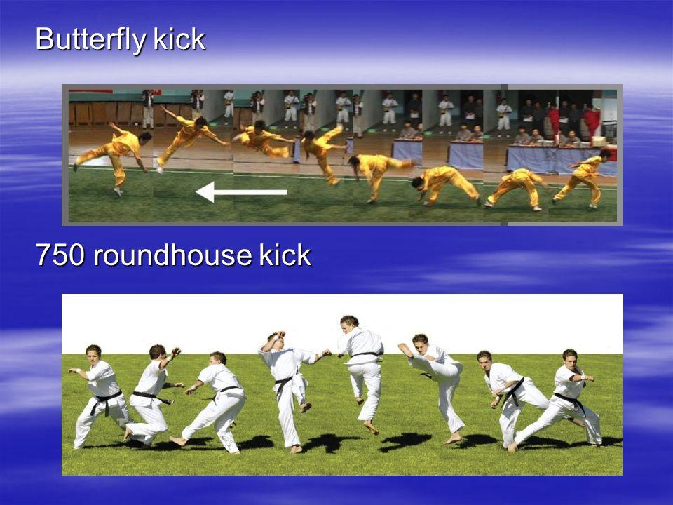 Butterfly kick 750 roundhouse kick