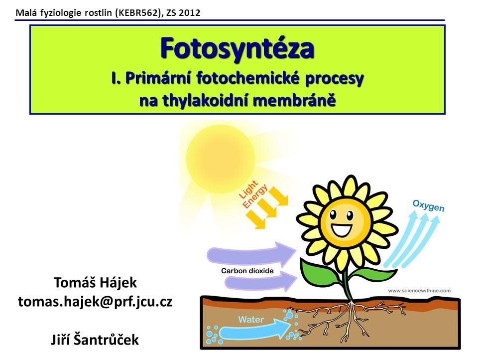 Malá fyziologie rostlin (KEBR562), ZS 2012 Fotosyntéza I. Primární fotochemické procesy na thylakoidní membráně Tomáš Hájek tomas.hajek@prf.jcu.cz Jiř