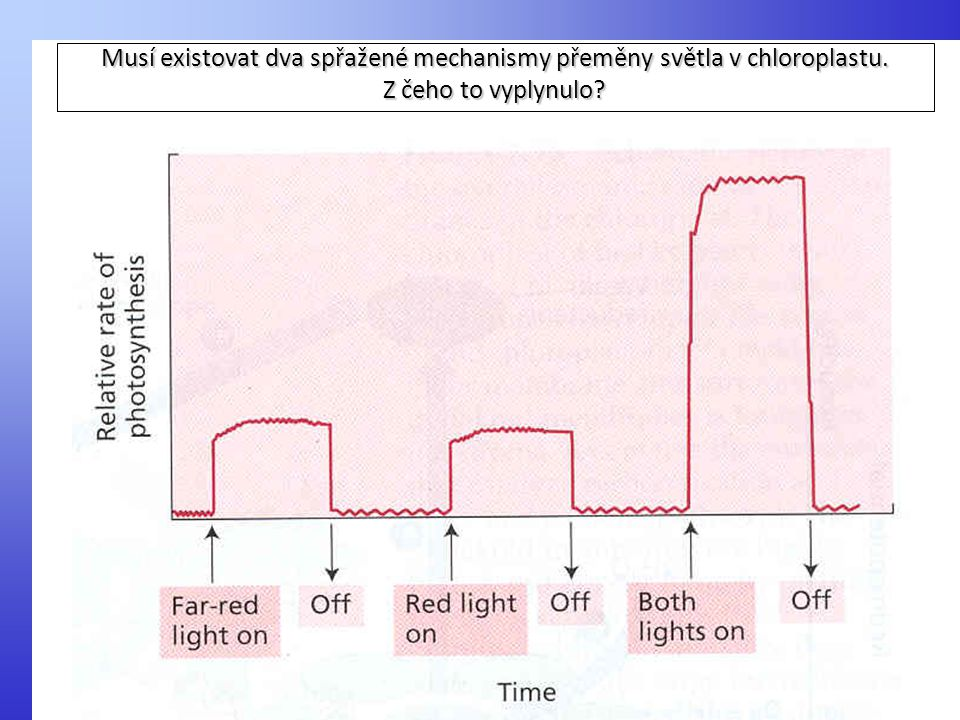 Musí existovat dva spřažené mechanismy přeměny světla v chloroplastu. Z čeho to vyplynulo?