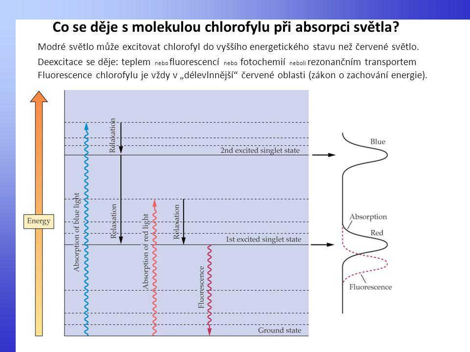 Modré světlo může excitovat chlorofyl do vyššího energetického stavu než červené světlo. Deexcitace se děje: teplem nebo fluorescencí nebo fotochemií