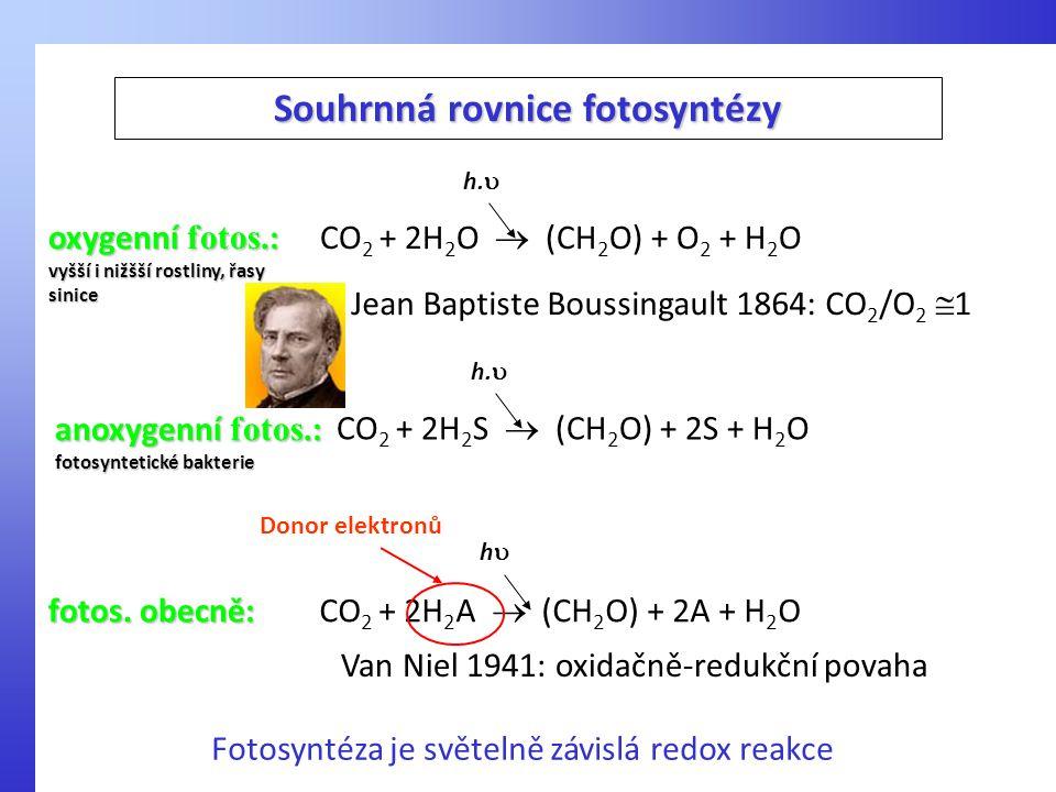 CO 2 + 2H 2 S  (CH 2 O) + 2S + H 2 O h.  anoxygenní fotos. : fotosyntetické bakterie Souhrnná rovnice fotosyntézy CO 2 + 2H 2 O  (CH 2 O) + O 2 + H